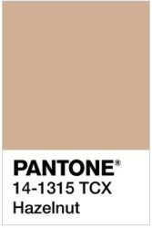 Hazelnut Light Creamy Brown Last But Not Least This Earthy Color Is The Go To Neutral For All Autumn Types Warm Deep Soft