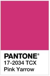 Pink Yarrow And Bold This Lively Is A Captivating Stimulating Color Perfect Match For Winter Types Cool Clear Deep Who Like To Be